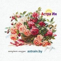 """2-06 """"Розы"""" Алиса"""