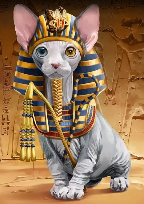 "WD2511 ""Pharaoh Sphynx Cat(Сфинкс-фараон)"" Wizardi"